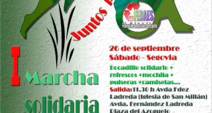 Cartel marcha solidaria Ataxia