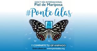 25 octubre dia internacional piel mariposa